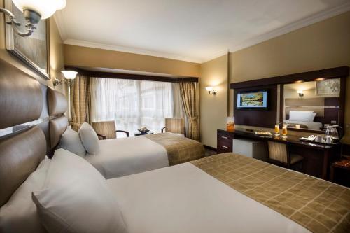 Pyramisa Suites Hotel Cairo - image 5