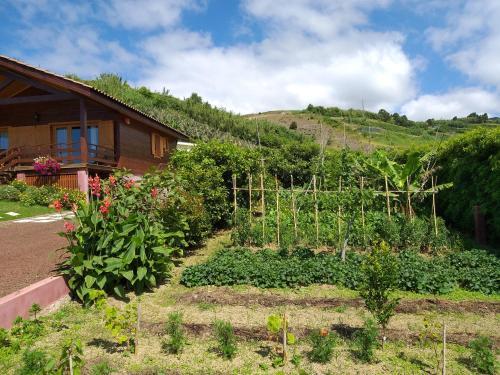 Quinta Da Pavoa - Cottage House - Photo 7 of 64