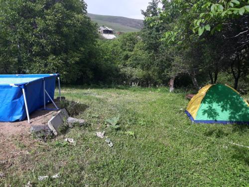 Aznvadzor Eco Camp - Photo 2 of 8