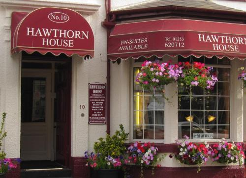 Hawthorn House (Bed & Breakfast)