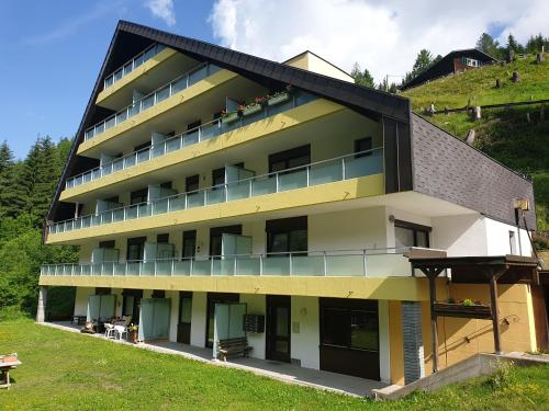Mountain apartment Innerkrems - Apartment