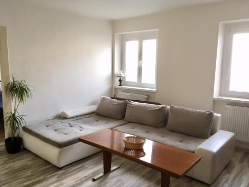 Cosy apartment in the city center