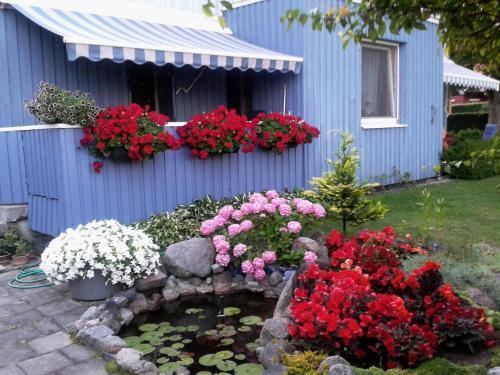 Room Rent In Neringa