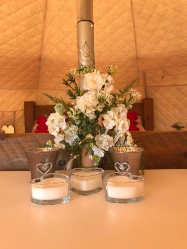 Beau Lotus Belle Tent, Camborne, Cornwall