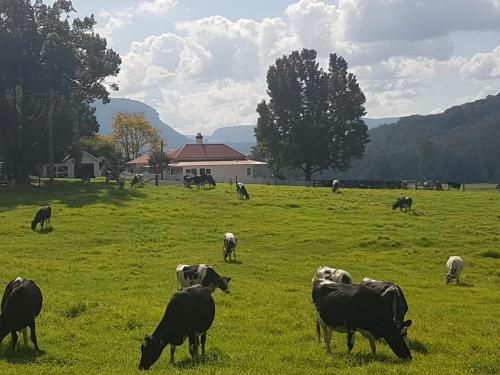 Glenmurray - Country farm stay!