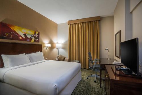 Hilton Garden Inn Riyadh Olaya - image 4