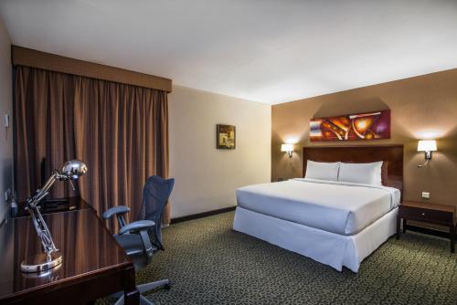 Hilton Garden Inn Riyadh Olaya - image 12