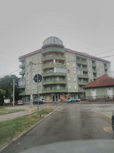 . Apartment Branicevska 1