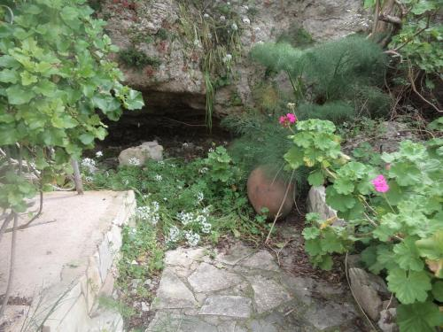 Oleander Stone House - Photo 8 of 26