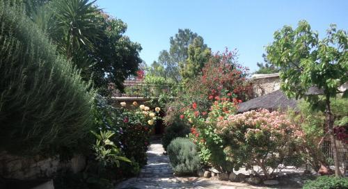Oleander Stone House - Photo 5 of 26