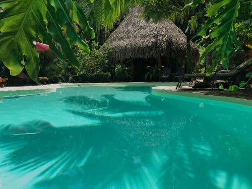 Hotel El Pequeno Gecko Verde
