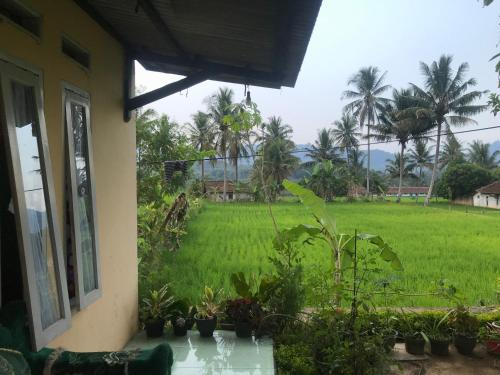 Java Lite Cottage, Cianjur