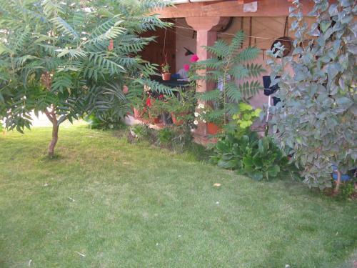 . Casa Rural Arturo I