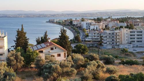 . Lefkadi Apartments By The sea