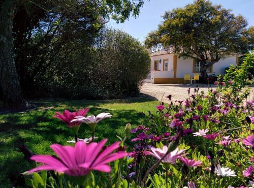 Casas das Amoreiras, Pension in Aldeia do Meco