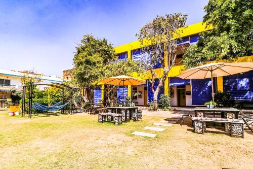 . The Hosteller Pushkar
