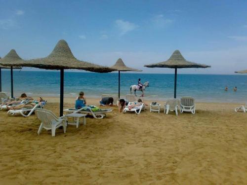 . Concorde Royal Beach Resort