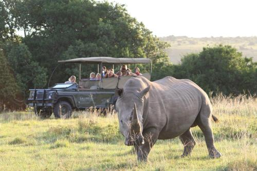 Off N2 National Road, Sidbury, Addo, 6131, South, Grahamstown, 6131, South Africa.