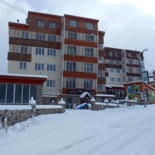 Bakuriani Apartment near Didveli - Bakuriani