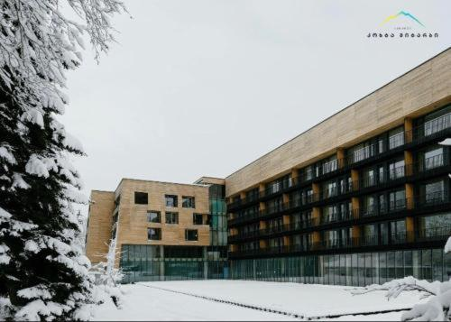 Bakuriani Kokhta-Mitarbi Resort, apartment#4 - Apartment - Bakuriani