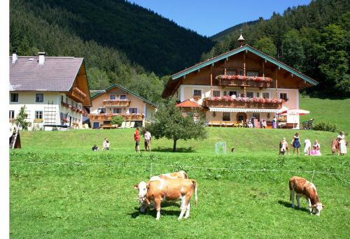 . Am Ferienbauernhof Schmiedbauer com Salzkammergut
