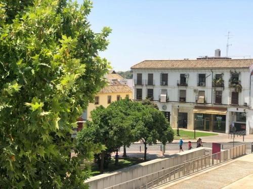 Junior Suite mit Aussicht Las Casas de la Judería de Córdoba 35