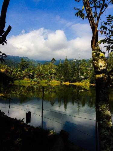 Janda Baik Resort En Bentong Malasia 20 Opiniones Precios Planet Of Hotels