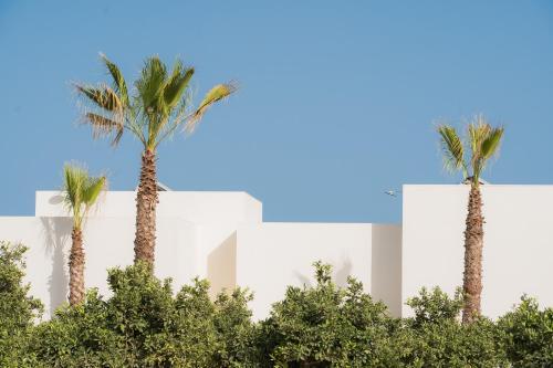 Villa con vistas al jardín Agroturismo Can Jaume 19