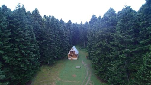 Forest Cabin Abies, Ambrolauri