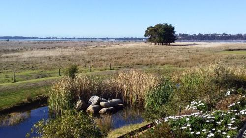 Pelican Point Sanctuary - Accommodation - St Helens