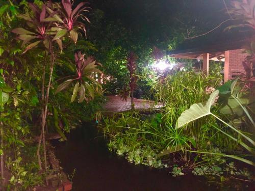 Kenanga Villa - Photo 5 of 37