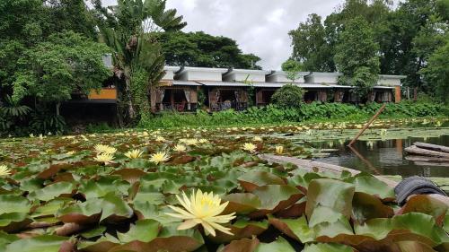 . Saikaew Resort