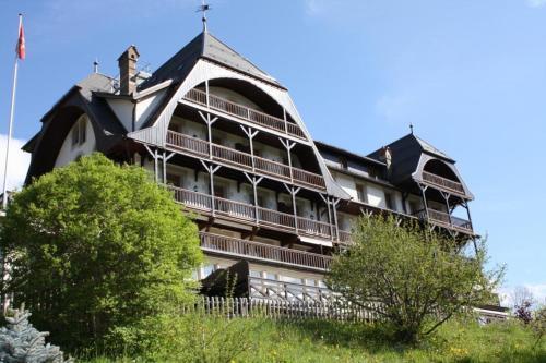 Appartement Soldanelle 32 - Apartment - Château d'Oex