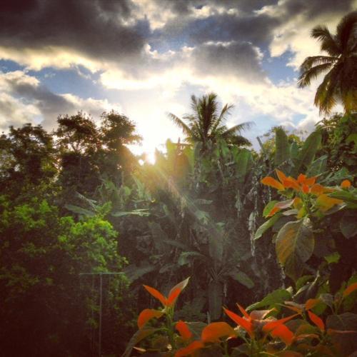Heavenly Hana Paradise - Hana, HI 96713