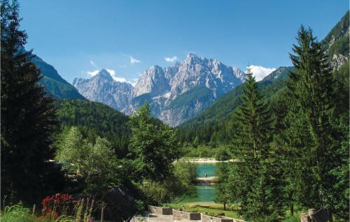 One-Bedroom Apartment in Kranjska Gora