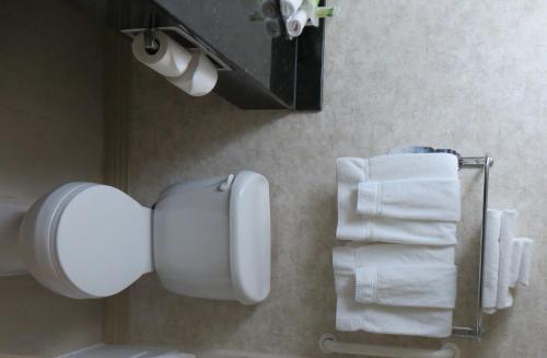 Holiday Inn Hotel & Suites-West Edmonton - Edmonton, AB T5S 2X1