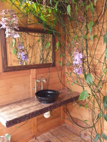 Colonia Rest House Glamping, Taba