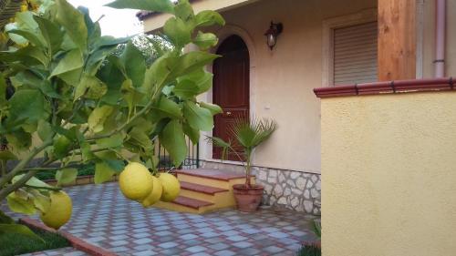 . Villa Rahal
