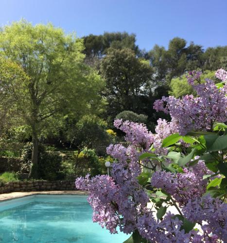 Mazet indépendant sur jardin/piscine - Location, gîte, Impasse ...