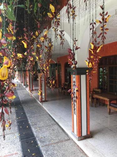Posada de Don Jose, Panajachel