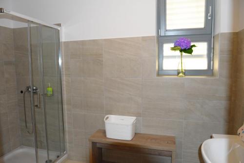 Hostel Ormoz, Cestica