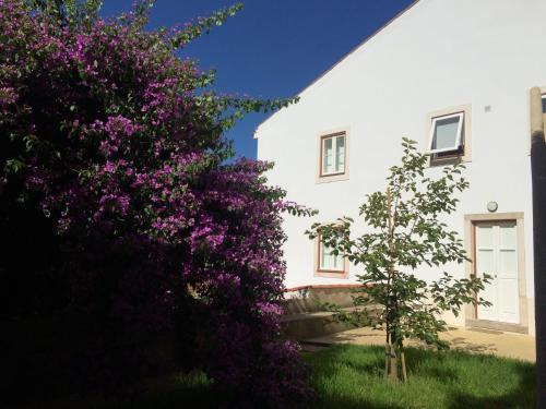 SOBRE RIBAS 2|12, Ferienwohnung in Coimbra bei Soutelo
