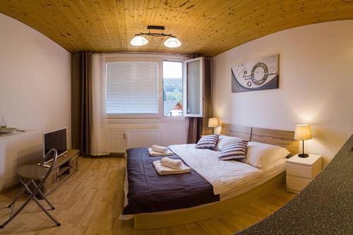 Mountain View Jiretin - Hotel - Jiřetín pod Bukovou
