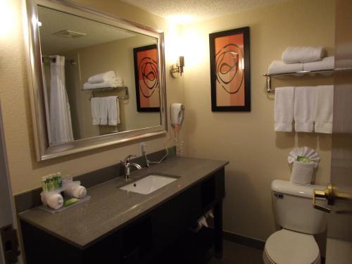 Holiday Inn Express LEXINGTON-SW (NICHOLASVILLE) - Nicholasville, KY 40536