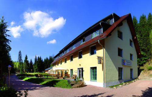 Waldhotel am Aschergraben - Hotel - Geising