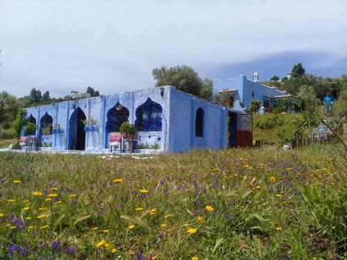 Casa Cherif Oda fotoğrafları
