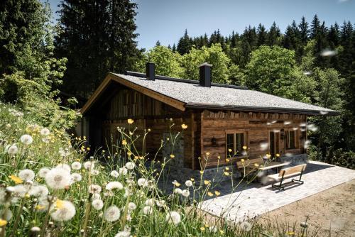 Wochenbrunner Alm Ferienhütten - Chalet - Ellmau