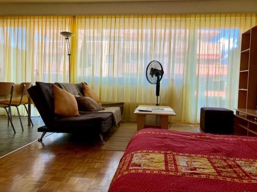 Studio Anémones, meublé, équipé, Monthey - Apartment