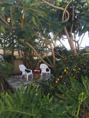 Top 12 Kefar Pines Vacation Rentals Apartments Hotels 9flats