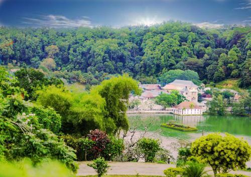 Фото отеля Castle Hill Bungalow